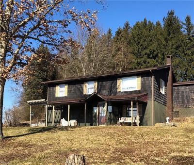 Columbiana County Single Family Home For Sale: 47990 Moore