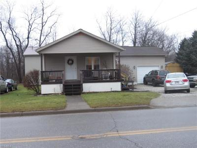 Single Family Home For Sale: 617 Valley St