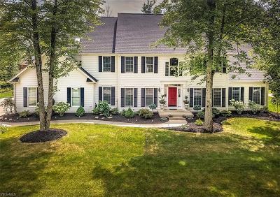 Hudson Single Family Home For Sale: 44 Great Oak Dr