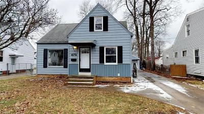 Lake County Single Family Home For Sale: 472 East 329th St