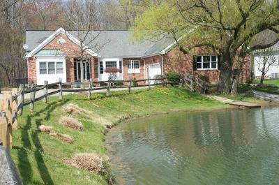 Lake County Single Family Home For Sale: 33905 Rosewood Trl