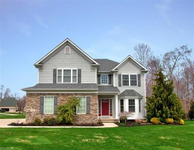 Lake County Single Family Home For Sale: 12161 Summerwood Dr