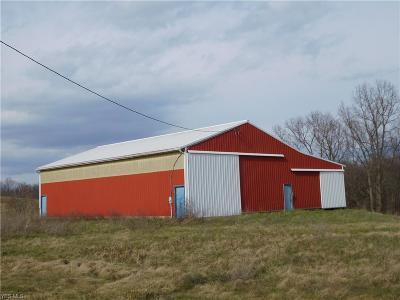 Guernsey County Farm & Ranch For Sale: 9995 Church Hill Rd