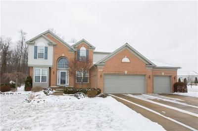 North Ridgeville OH Single Family Home For Sale: $335,000