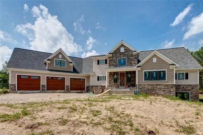 Chardon Single Family Home For Sale: 11130 River Road