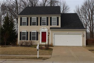 Single Family Home For Sale: 8489 Westfield Park Dr