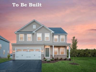 Lake County Single Family Home For Sale: 38533 Ranally Way