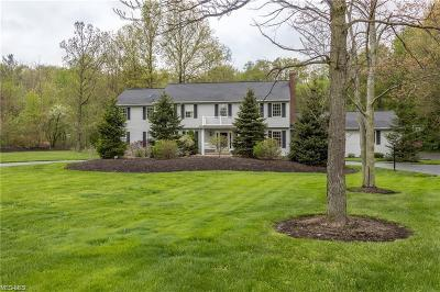 Chagrin Falls Single Family Home For Sale: 590 Solon Rd