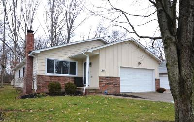 Solon Single Family Home Active Under Contract: 6438 Glenallen Avenue