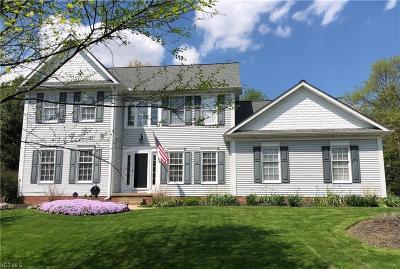 Hudson Single Family Home For Sale: 14 Nathan Ct
