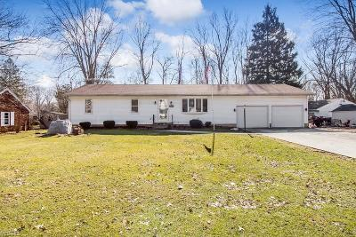 Elyria Single Family Home For Sale: 41971 Adelbert St