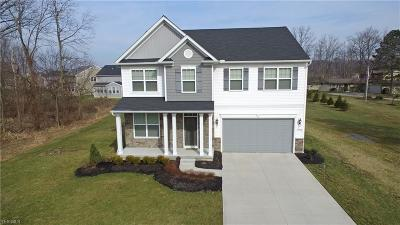 Strongsville Single Family Home For Sale: 19934 Westwood Dr