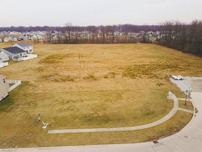 Lorain County Residential Lots & Land For Sale: 3581 Astor Ln