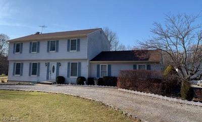 Hudson Single Family Home For Sale: 6110 Stow Rd