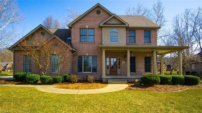 Williamstown Single Family Home For Sale: 18 Henderson Cir