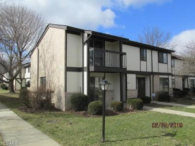 Middleburg Heights Condo/Townhouse For Sale: 16279 Heather Ln #A