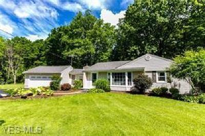 Chagrin Falls Single Family Home For Sale: 7856 Scotland Dr