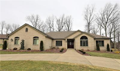 Columbiana County Single Family Home For Sale: 2229 Foxden Dr
