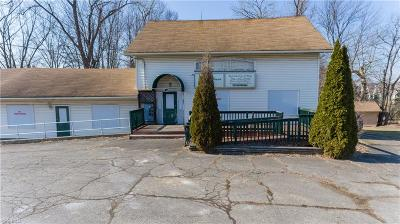 Avon Single Family Home For Sale: 37600 Detroit Road