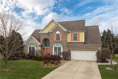 Twinsburg Single Family Home For Sale: 2898 Orin Way