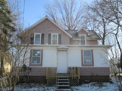 Painesville OH Single Family Home For Sale: $41,340