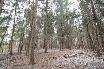 Muskingum County Residential Lots & Land For Sale: Ford Rd