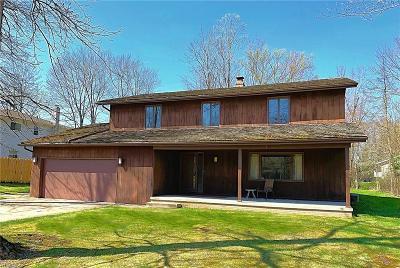 Solon Single Family Home For Sale: 37375 Fox Run Dr