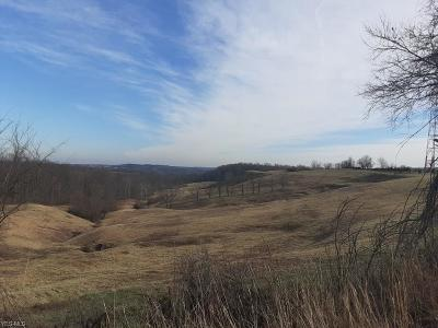 Morgan County Residential Lots & Land For Sale: E State Route 60