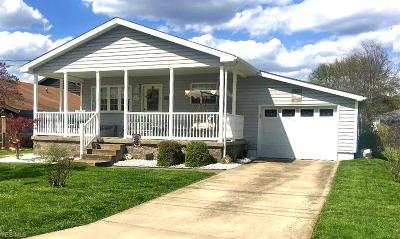 Vienna Single Family Home For Sale: 1417 27th St