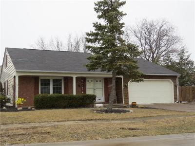 Lorain Single Family Home For Sale: 2704 West 38th St