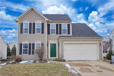 Painesville OH Single Family Home For Sale: $250,000