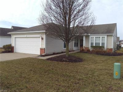 North Ridgeville Single Family Home For Sale: 9468 Drury Way