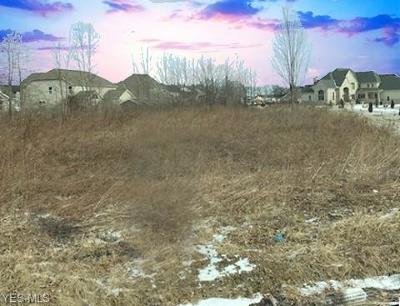 Lorain County Residential Lots & Land For Sale: French Creek Rd