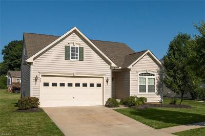 Kent Single Family Home For Sale: 822 Stonewater Dr