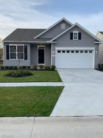 Lorain Single Family Home For Sale: 3851 Heron Dr