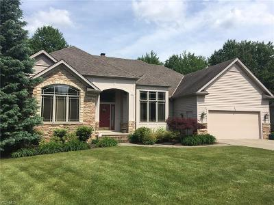Solon Single Family Home For Sale: 6689 Brandamore Ct