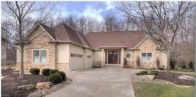 Solon Single Family Home For Sale: 7356 Stockwood Dr