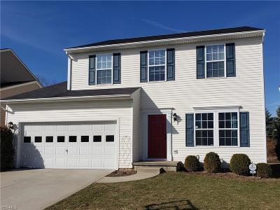 Kent Single Family Home For Sale: 993 Edgewater Cir