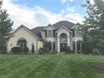Brecksville Single Family Home For Sale: 4865 Valleybrook Dr