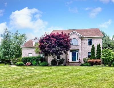 Painesville OH Single Family Home For Sale: $309,000