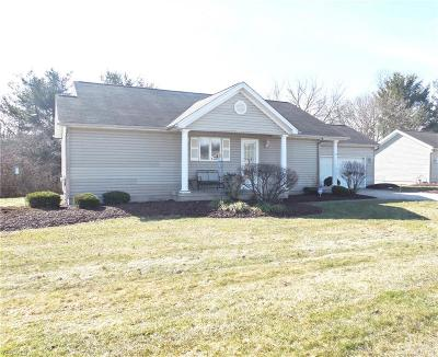Austintown Condo/Townhouse For Sale: 603 South Raccoon Rd #9