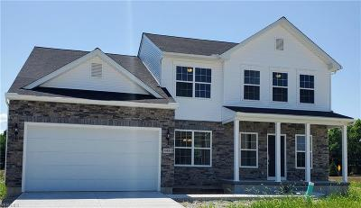 Lorain Single Family Home For Sale: 4480 Weathervane Dr