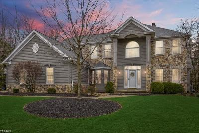 Broadview Heights Single Family Home For Sale: 8145 Bishops Ct