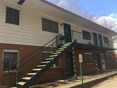 Zanesville Commercial For Sale: 2250 Creedmoor Dr