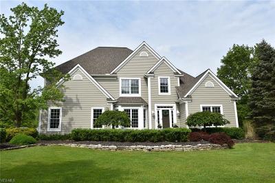Hudson Single Family Home For Sale: 77 Prescott Dr