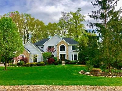 Copley Single Family Home For Sale: 4044 Stonebridge Blvd