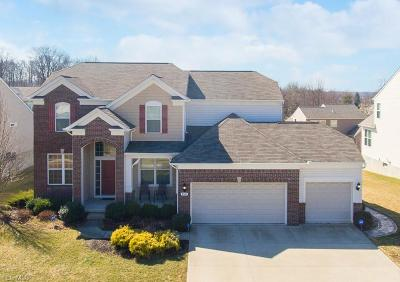 Strongsville Single Family Home For Sale: 9341 Ellis Way