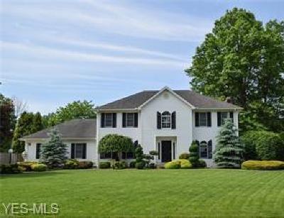 Warren Single Family Home For Sale: 372 Avalon