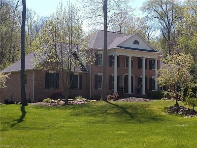 Medina County Single Family Home For Sale: 580 Messina Drive