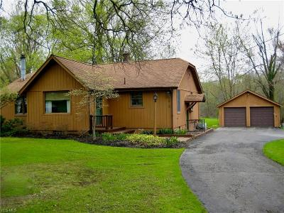 Canfield Single Family Home For Sale: 3908 Shields Rd